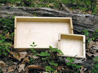 Fallen Tree Wooden Trays