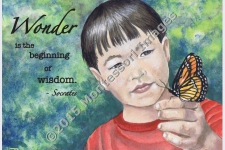 &#8220;Wonder . . . is the beginning of wisdom&#8221;<br/>-Socrates